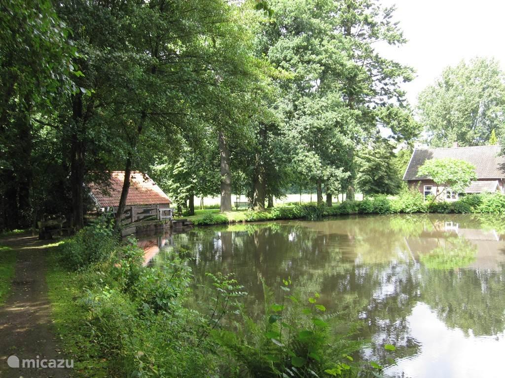 De vijver waar de watermolen aan ligt in Wilsum.