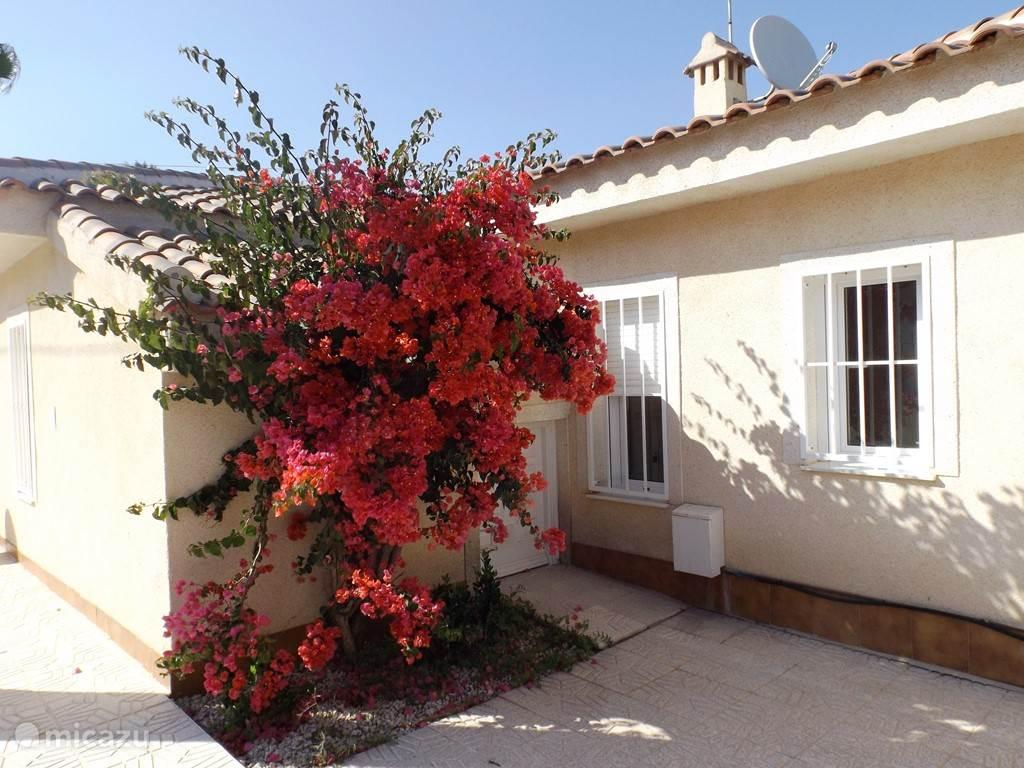 Vakantiehuis Spanje, Costa Blanca, Ciudad Quesada villa La Buganvilla