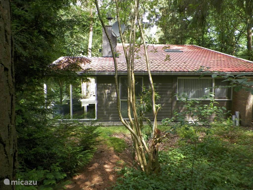 Vakantiehuis Nederland, Overijssel, Rheezerveen – bungalow Bungalow 'Boslust'