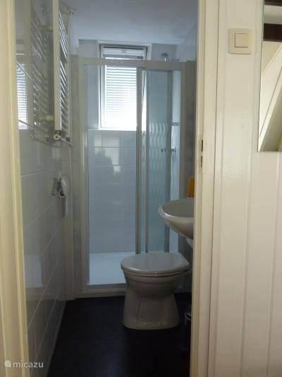 Vernieuwde badkamer met toilet en dakraam voor juiste ventilatie.