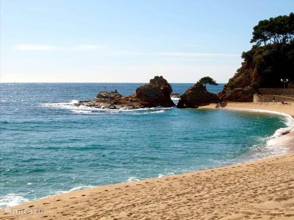 strand van Lloret