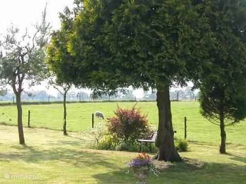 Uitzicht op het weiland naast de tuin