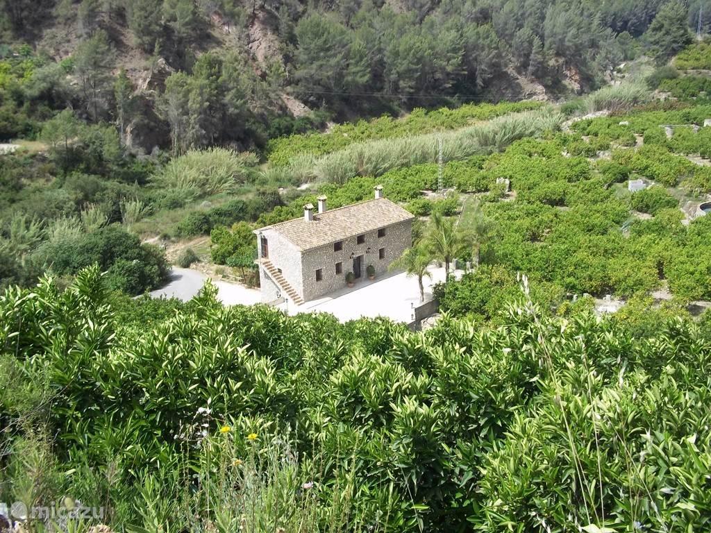 Het huis tussen de sinasappel en citroen bomen