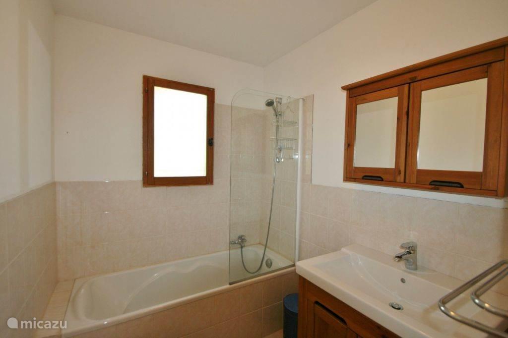 Badkamer met ligbad en douche ineen, grote wastafel met een spiegelkast en wasmand.