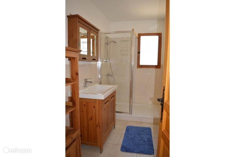 Badkamer met ruime inloop douche, grote wastafel met een spiegelkast en wasmand.
