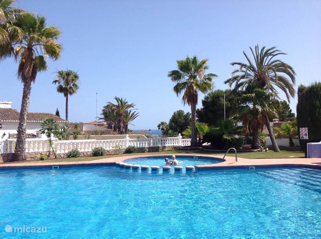 Het gemeenschappelijke zwembad met zeezicht.