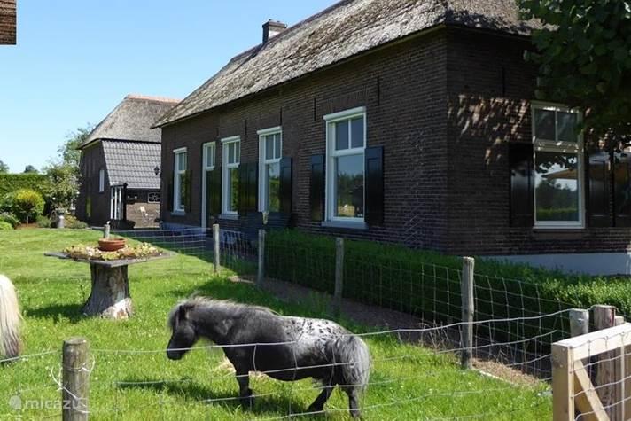 Vakantiehuis Nederland, Overijssel, Bathmen Vakantiehuis Vakantiehuis 'De Bolle'
