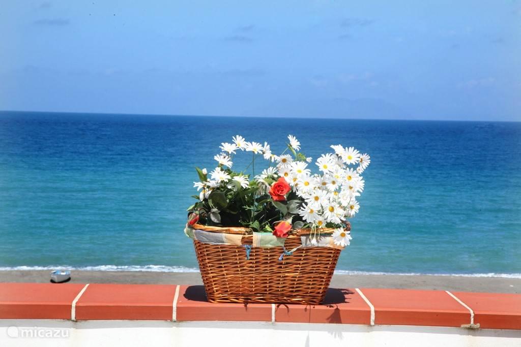 Vacation rental Italy, Sicily, Terme Vigliatore apartment Patrizia's Sweet Home