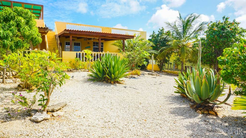 Vacation rental Bonaire, Bonaire, Kralendijk - holiday house Greenhouse Kingdoms