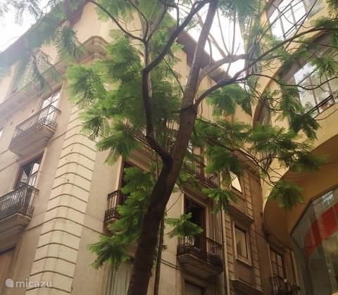 Vakantiehuis Spanje, Valencia – appartement Appartement Hartje Centrum Valencia