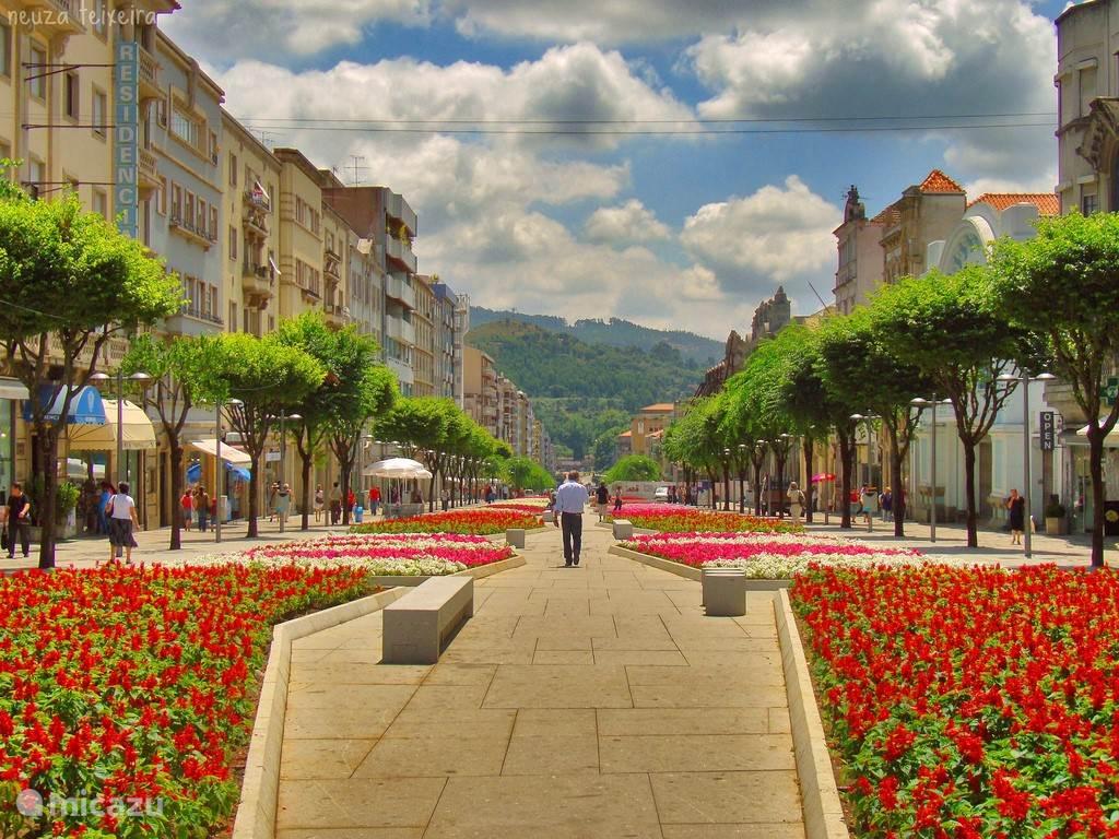 Braga centrum