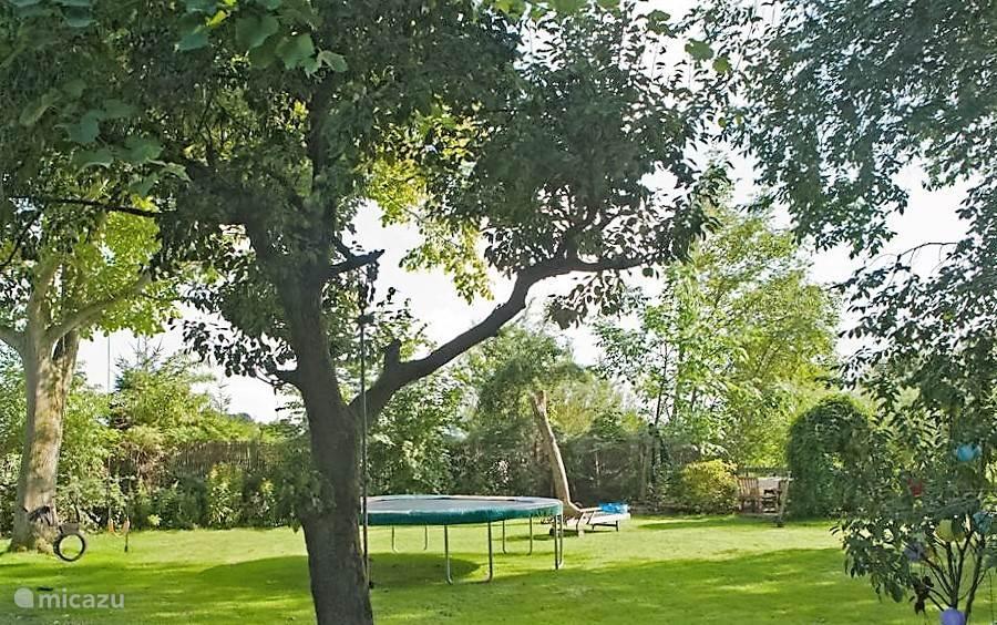 Tuin met trampoline en meerdere zitjes