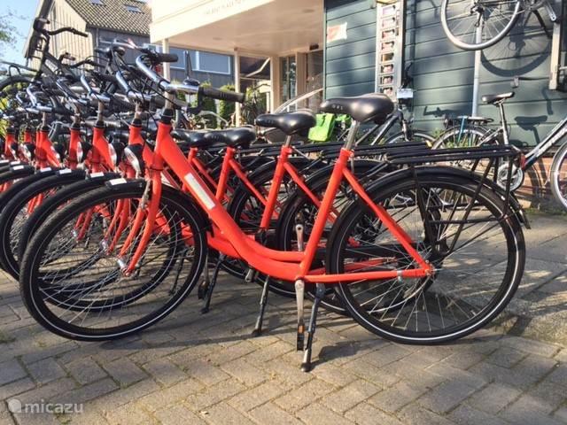 De fietsen die wij voor u kunnen regelen. Echte solide stadsfietsen.