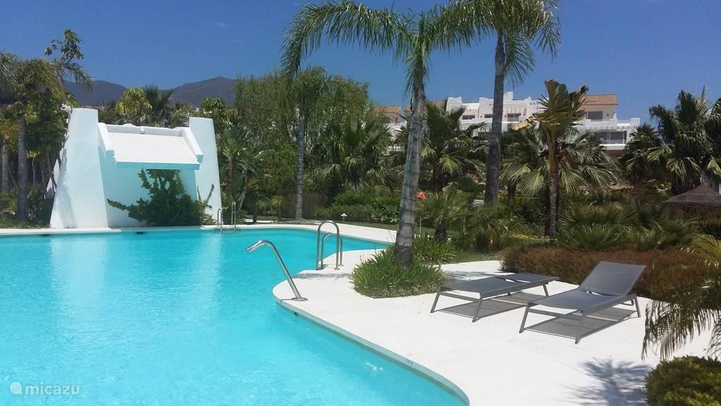 Community pool + lounge
