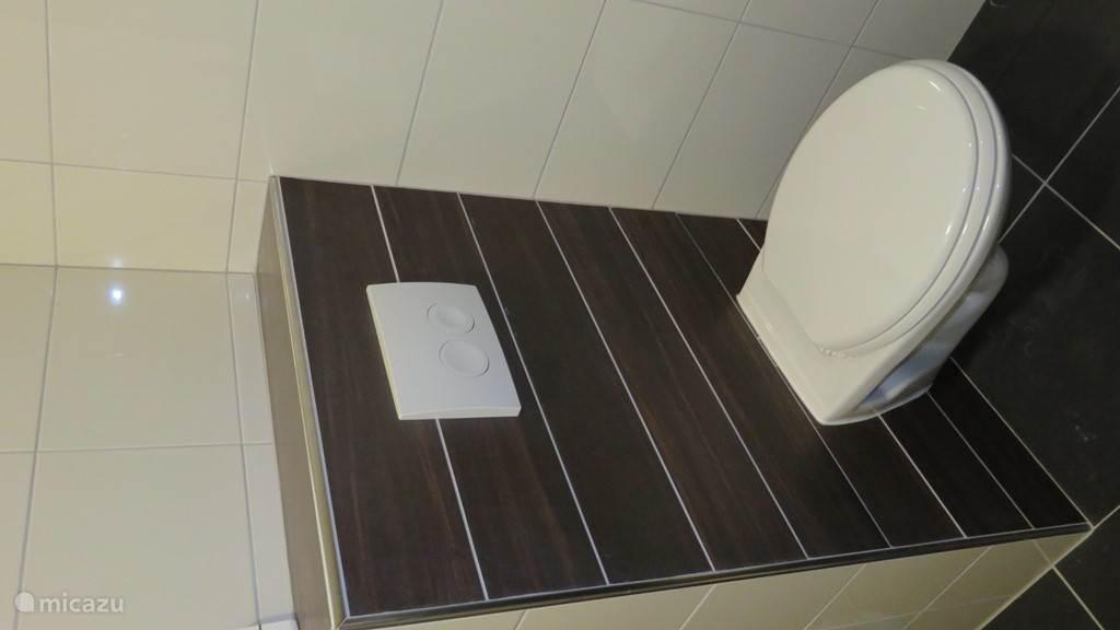Badkamer beneden voorzien van grote wastafel, 2e toilet en ruime inloopdouche.