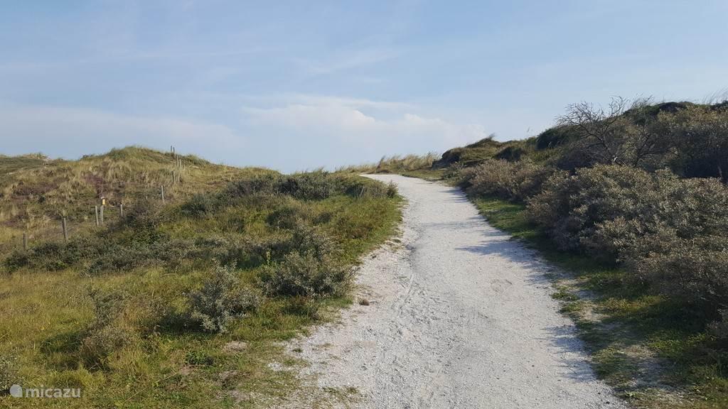 Je kunt via verschillende paadjes naar het strand lopen