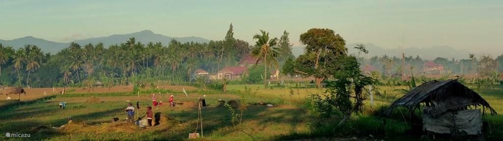 uitzicht over de sawa's