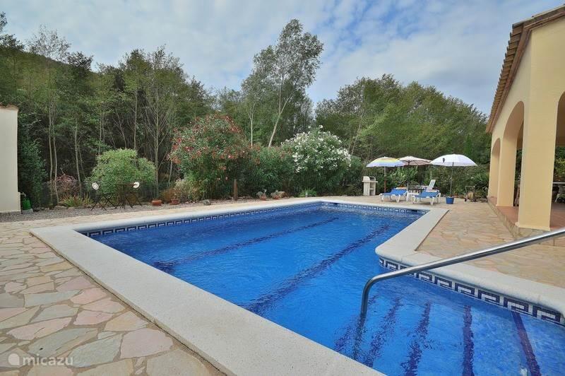 Zwembad met stenen inlooptrap met leuning.  's Avonds gezellige zwembadverlichting. Tuin grenzend aan groene zone, veel privacy.