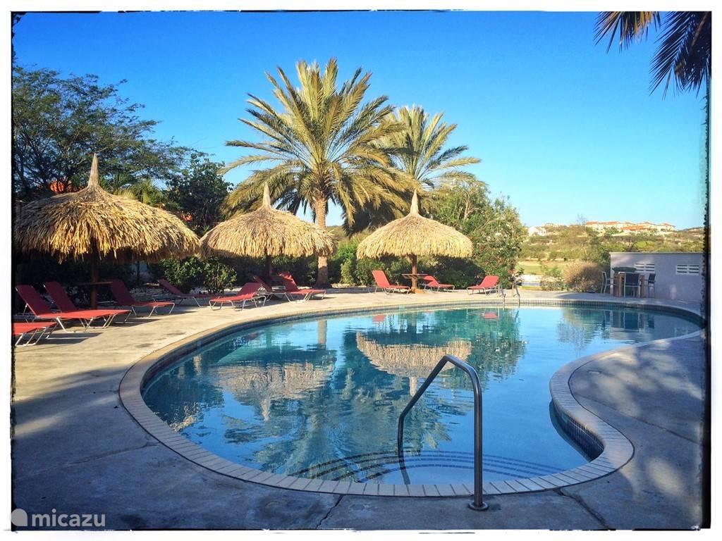 Helder aqua zoetwaterzwembad schuin voor onze villa; 's ochtends lekker wakker worden!