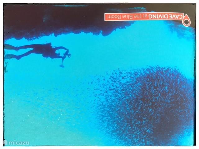 Duiken kan op vele mooie plekken. Vraag naar de Blue Wal op Blue Bay bij Mick van de duikschool.