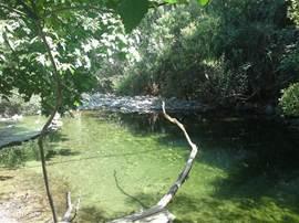 Rio verde op ongeveer een half uur rijden van La Molineta. Hier staat het hele jaar genoeg water in om te zwemmen.