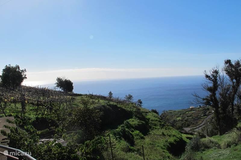 Vakantiehuis Portugal, Madeira, Calheta Gîte / Cottage Verdelho