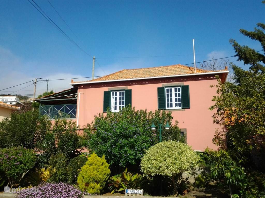 Vakantiehuis Portugal, Madeira, Calheta gîte / cottage Casa Carlota