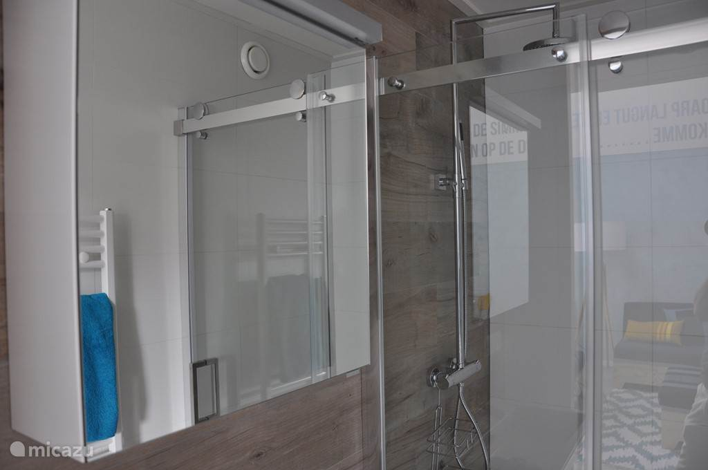Badkamer met plensdouche (apart toilet).
