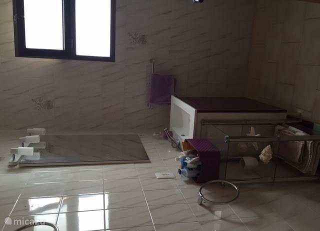 badkamer 2 boven met toilet en douche