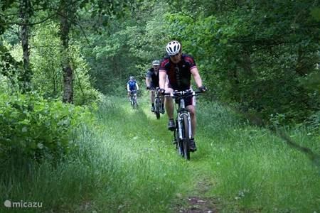 Met de paarden er op uit of op de mountainbike