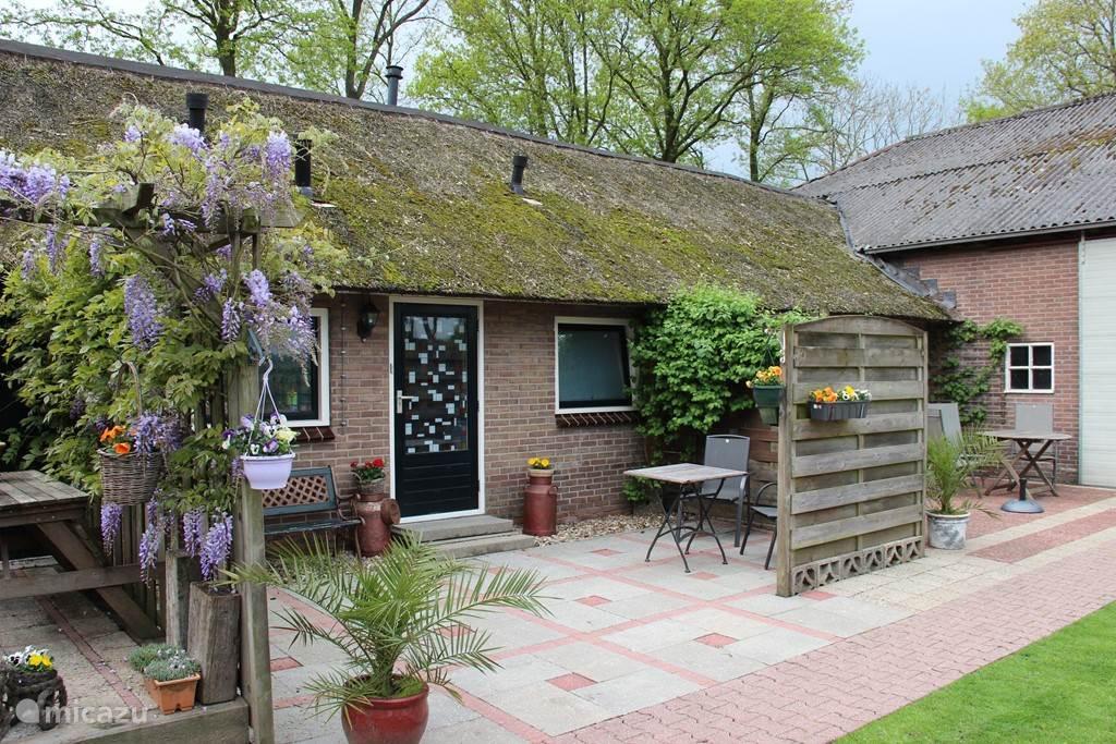 Vakantiehuis Nederland, Drenthe, Dwingeloo - appartement Oosteresch