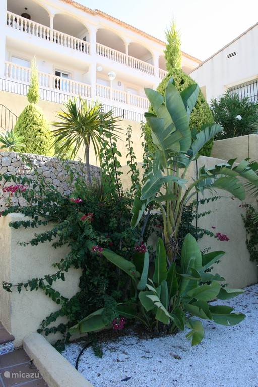 fraai aangelegde tuin zorgt voor een Mediterrane sfeer