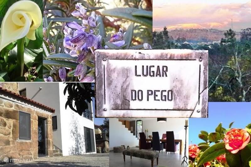Vakantiehuis Portugal, Beiras, Viseu Villa Villa Lugar do Pego