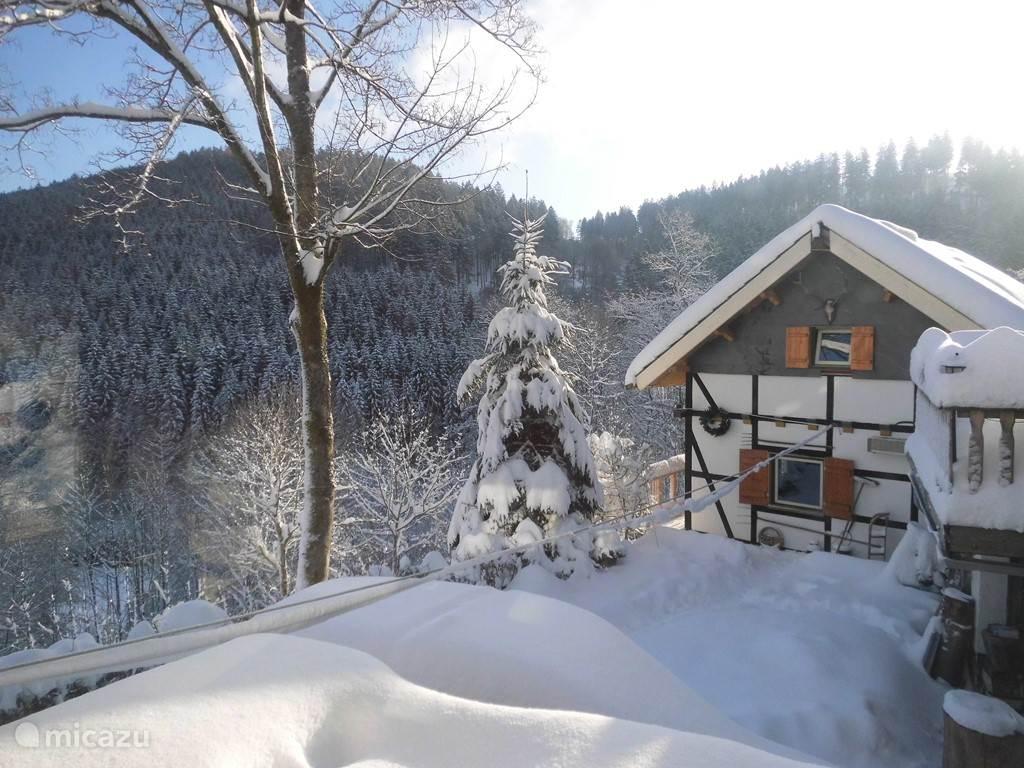Vakantiehuis Duitsland, Sauerland, Winterberg - vakantiehuis Jagdhaus am Rappelstein