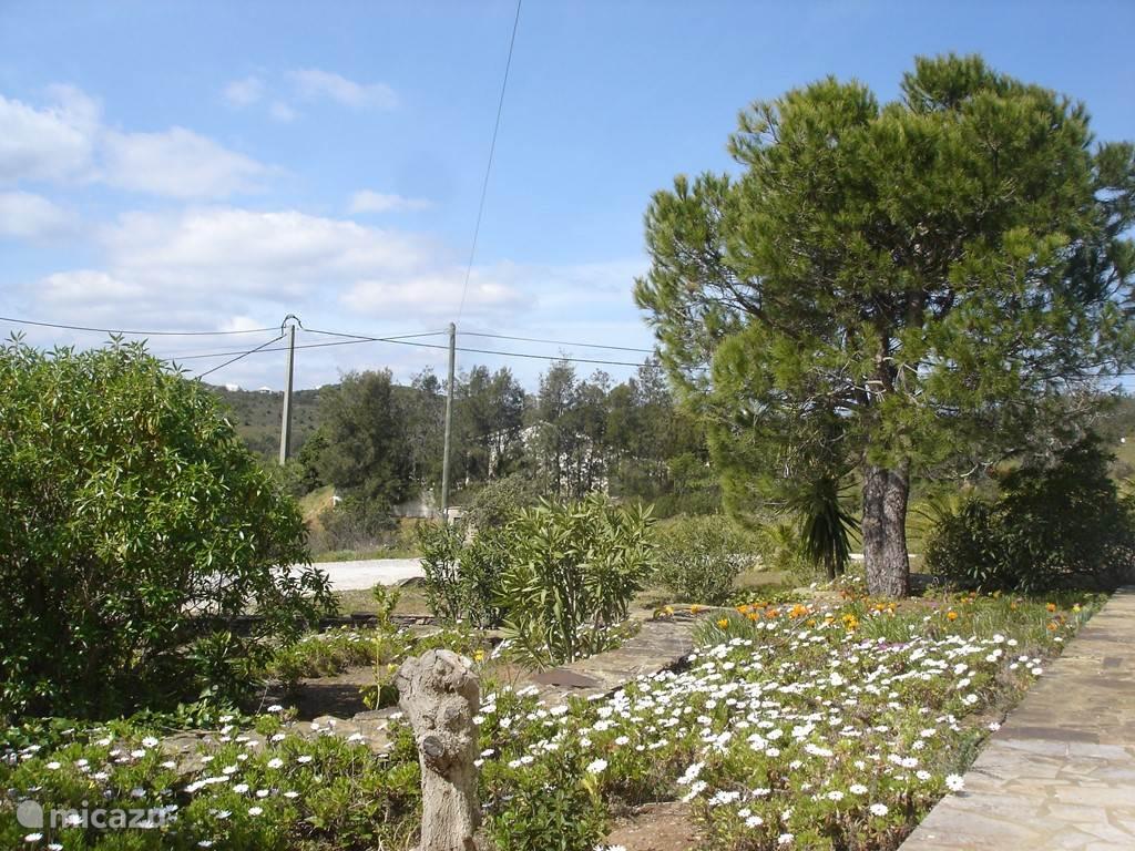 Tuin aan de voorkant van de villa