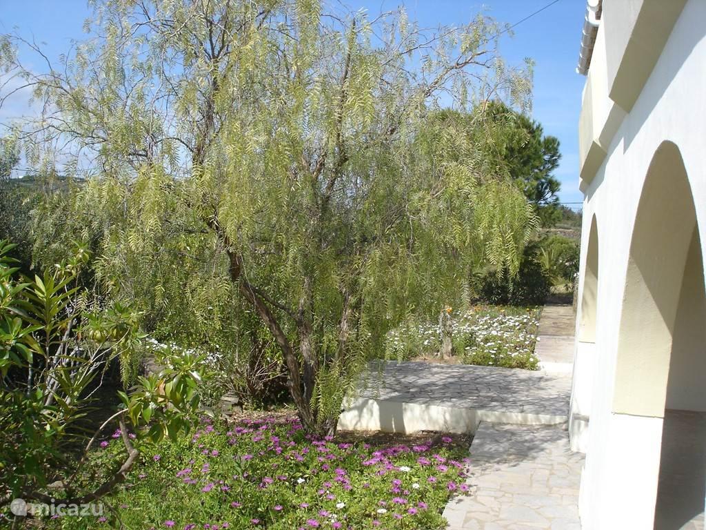 De tuin aan de voorkant van het huis met een terras en een arcade waar je lekker kan zitten,zowel in de schaduw als in de zon.
