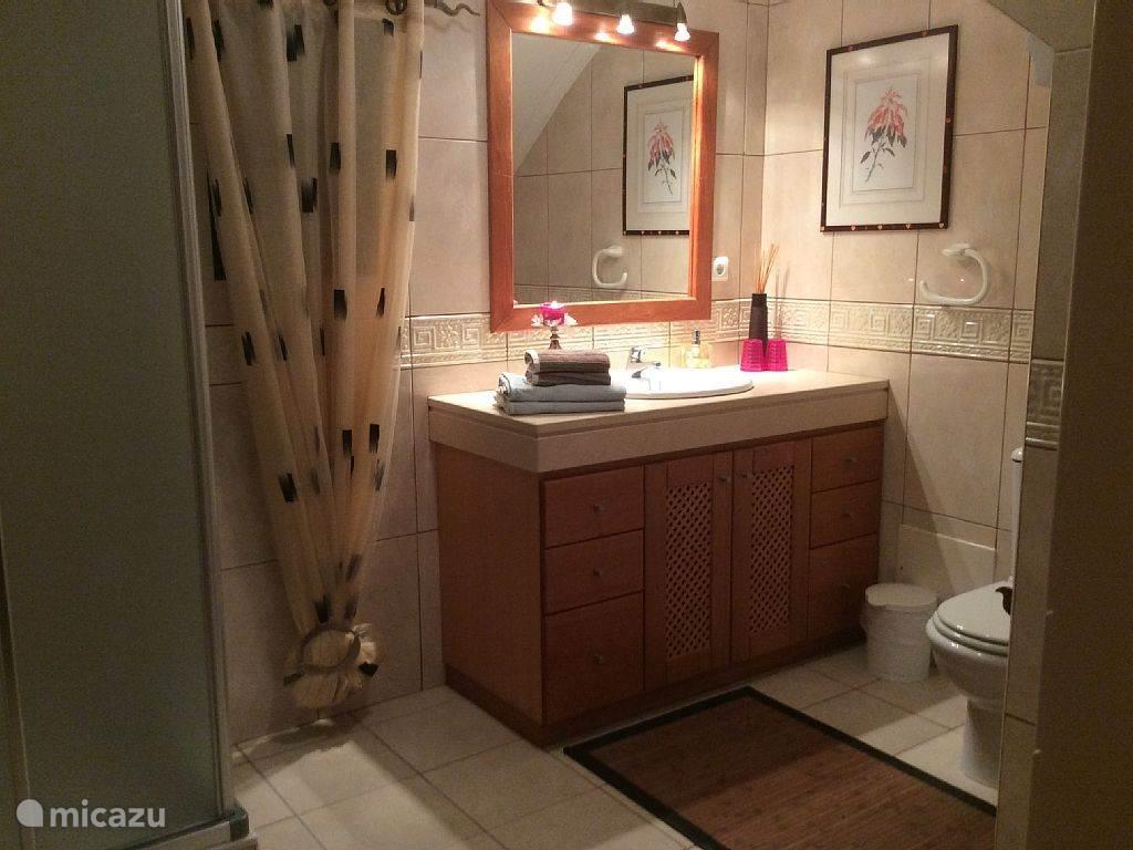 een van de 2 badkamers