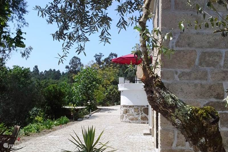 Vakantiehuis Portugal, Beiras, Viseu Appartement Ruime slaapkamer op bg & keuken 1e
