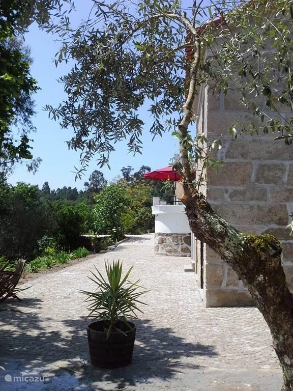 Vakantiehuis Portugal, Beiras, Viseu finca Ruim landhuis voor 9 (11)p bergzicht