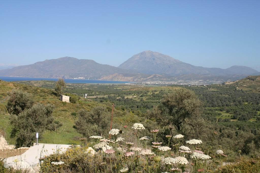 Villa Ilios - View