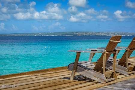 Vakantiehuis Bonaire – appartement Casa Iguana direct aan de zee