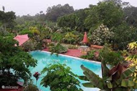 Zwembad Krama's place in het dorpje Tamanredjo.