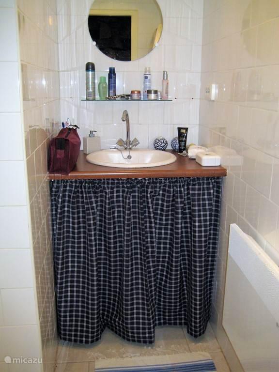 Badkamer met ruime douche en wastafel