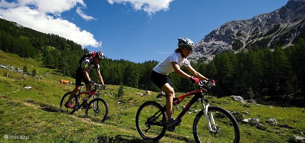 Mountainbiken Hohentauern