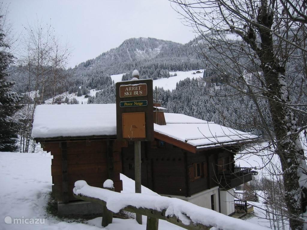 Skibushalte voor de deur