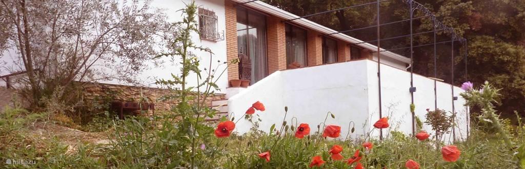 Het moderne huis heeft een sfeer van 1001 nacht. Casa Fortuna ligt in de vallei en heeft prachtig uitzicht vanaf het grote zonneterras. Het is licht, ruim en sfeervol, met vele Moorse details. Een romantische plek
