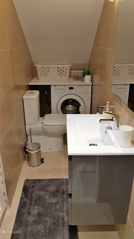 badkamer met douche en toilet bij de slaapkamer op de begane grond