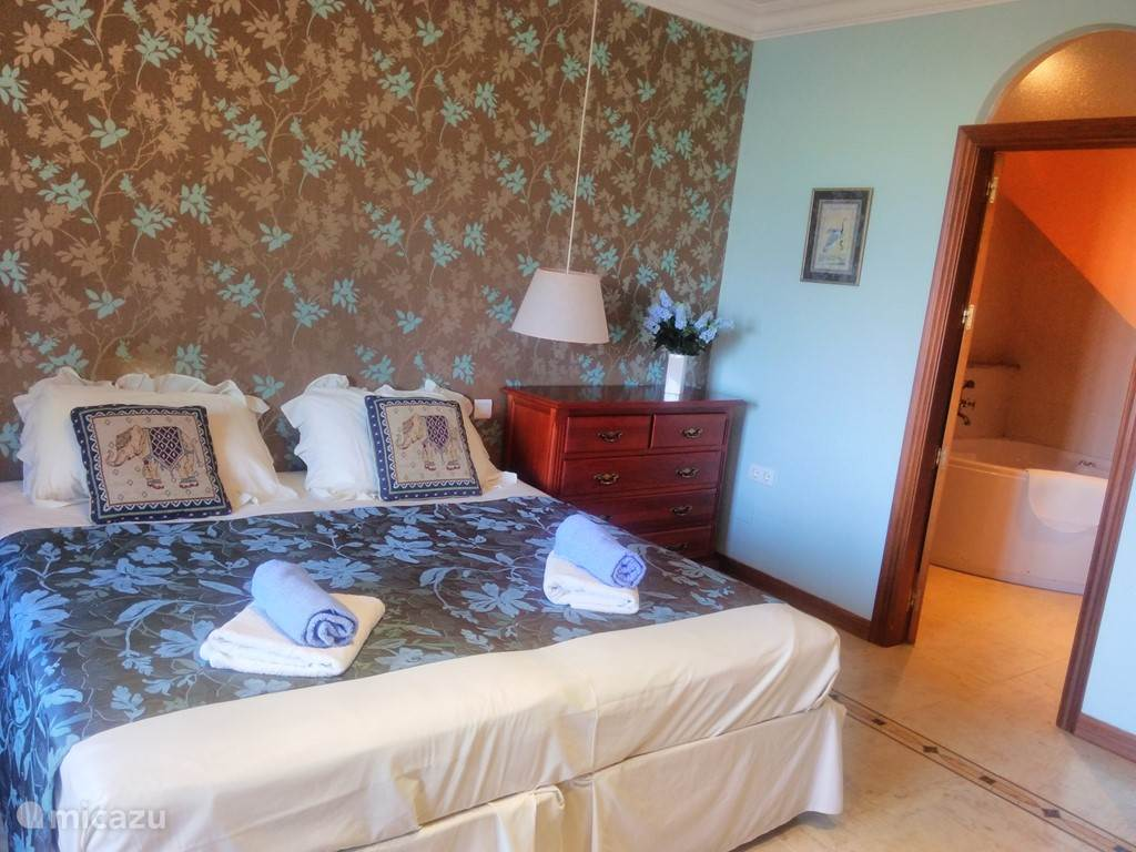 Master Bedroom met Jacuzi op begane grond.
