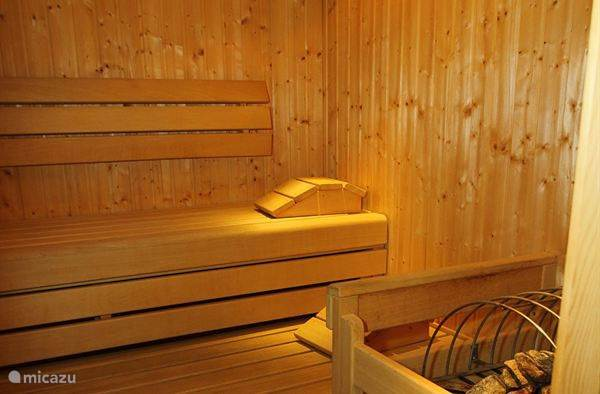 Common Ski cellar and sauna on the ground floor