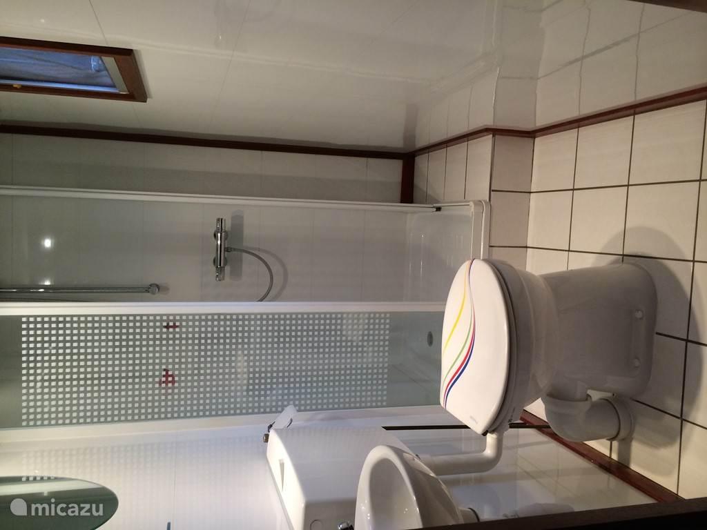 Douche met toilet en wasbak en spiegel